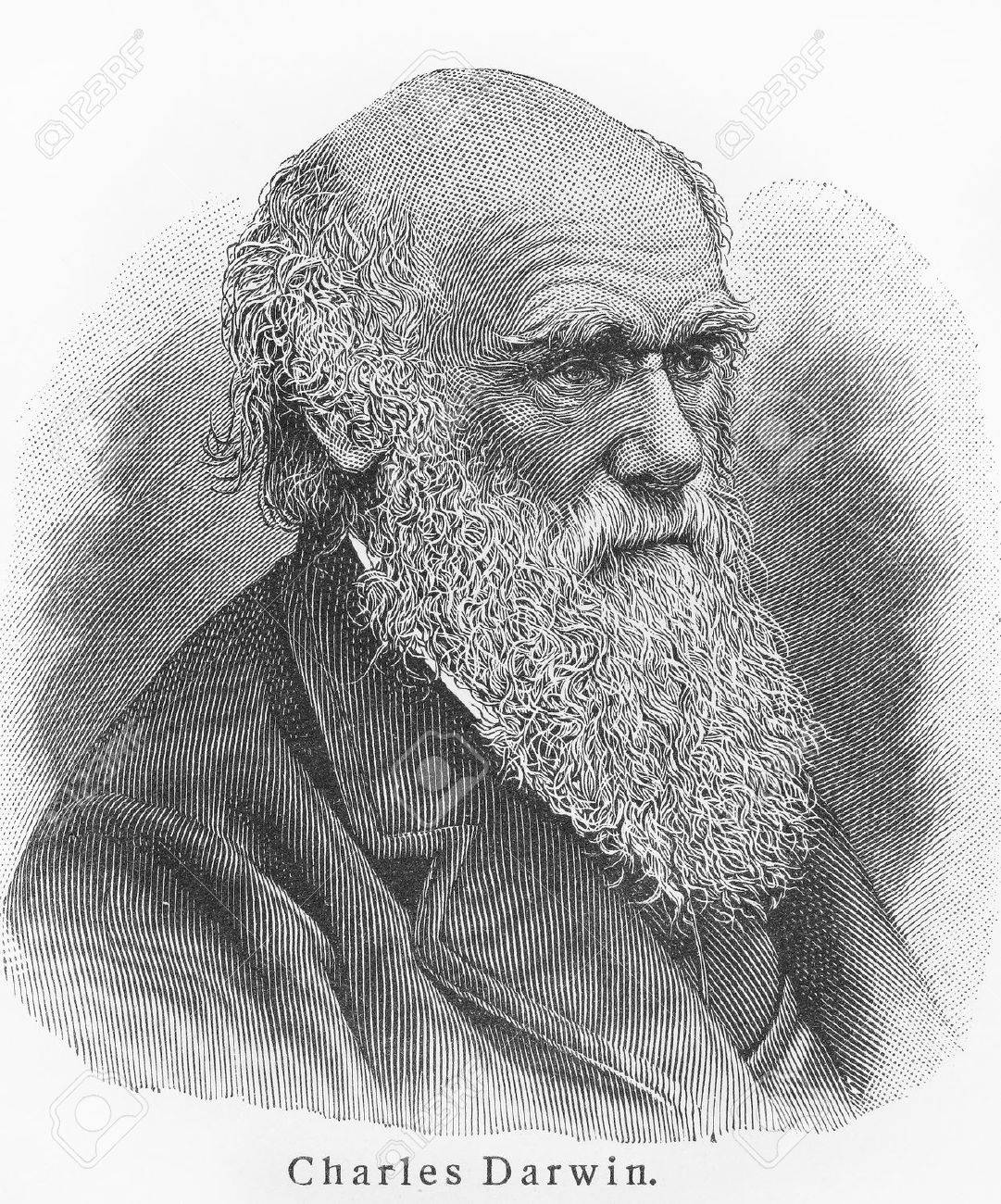 Charles Darwin - Picture from Meyers Lexicon books written in German language. Collection of 21 volumes published between 1905 and 1909.  Stock Photo - 11259821