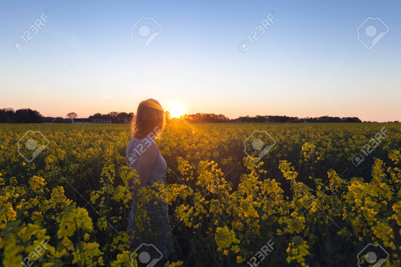 Flower field sunset Flowers And Tree Beautiful Woman Walking In Flower Field At Sunset Stock Photo 70705161 123rfcom Beautiful Woman Walking In Flower Field At Sunset Stock Photo