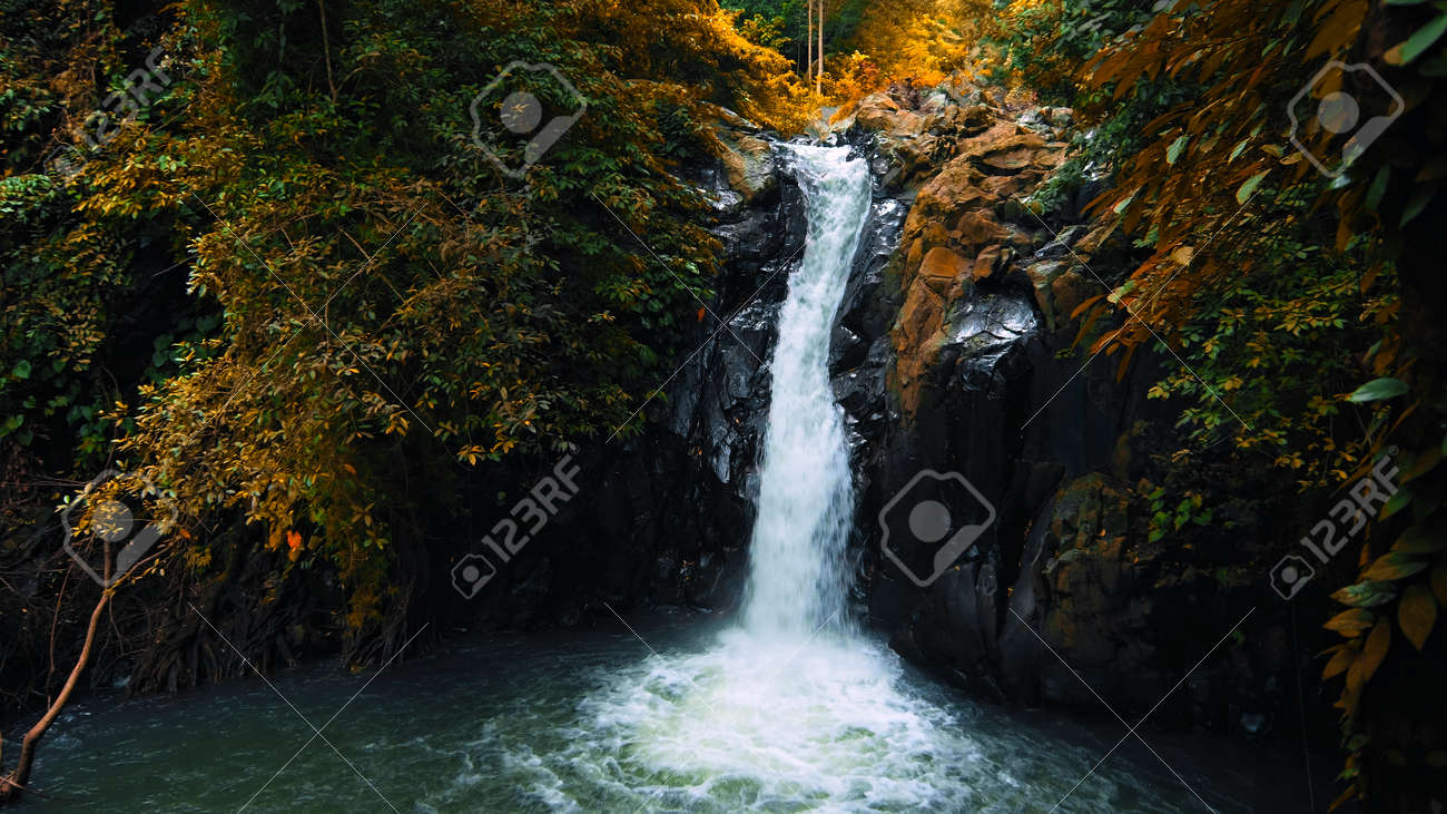 Picture of waterfall with rocks among tropical jungle with green plants and trees and water falling down into river - 171135989