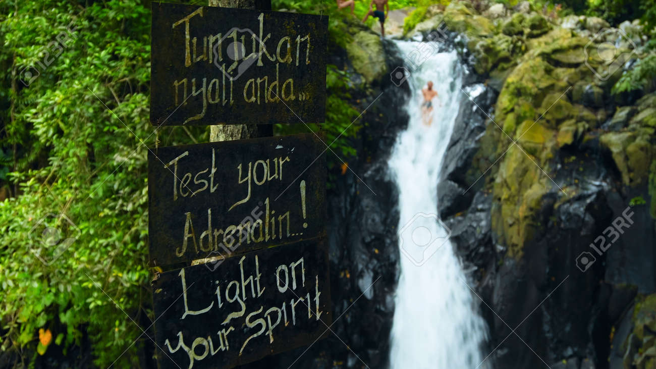 """tropical jungle with green plants and trees with the text on the billboard """"Test your adrenalin!"""" - 171136207"""