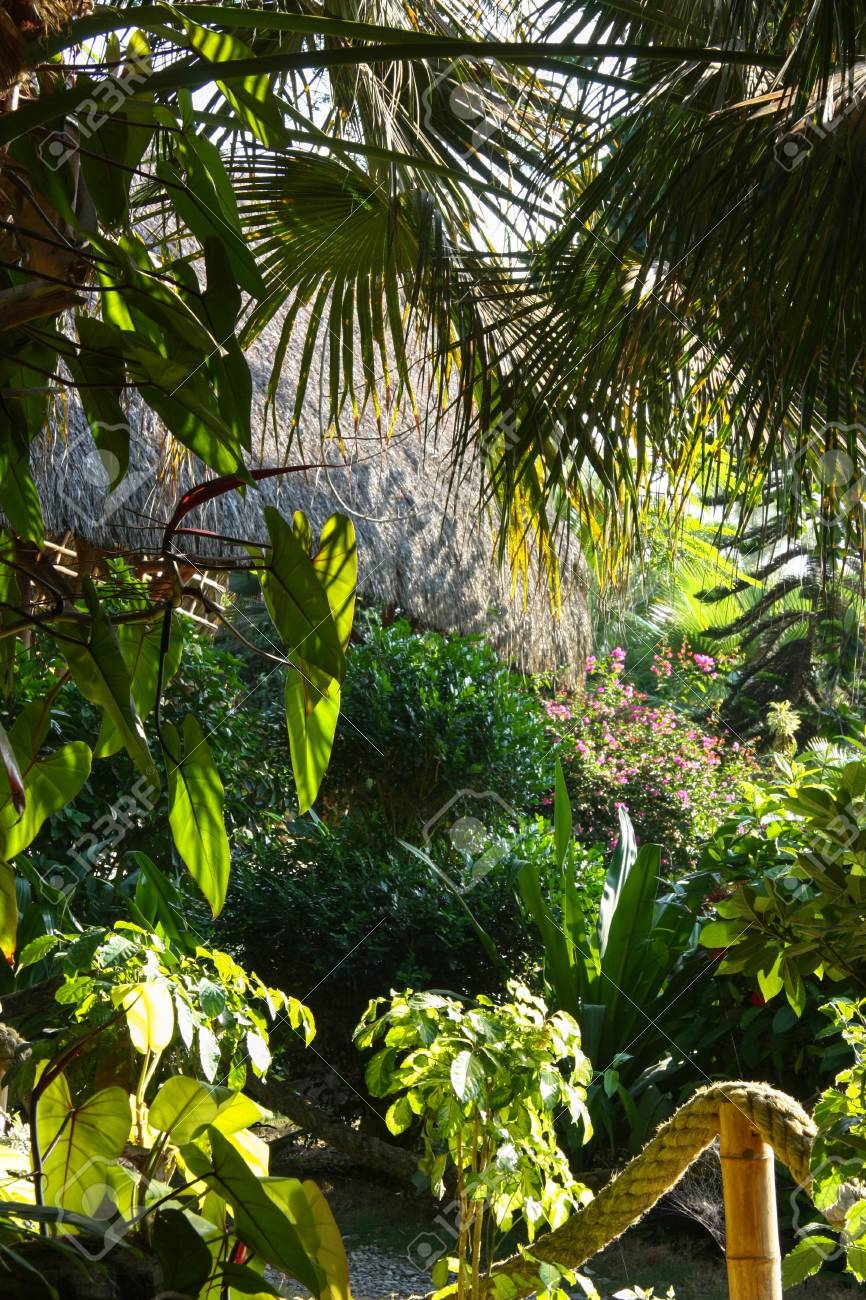 Gardens In A Beach Resort In Ecuador Stock Photo, Picture And ...