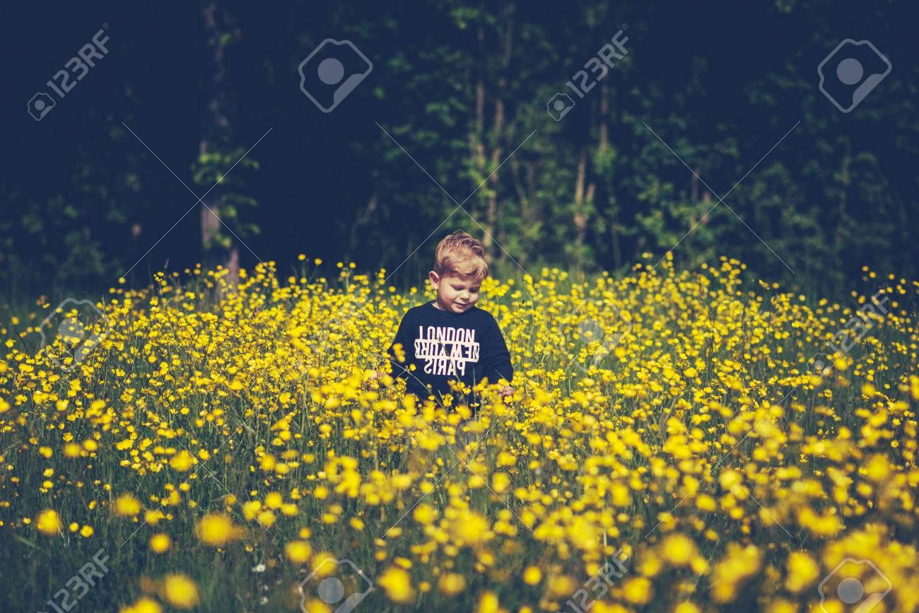 Little Cute Boy Child In A Wonderful Field Of Yellow Flowers Stock