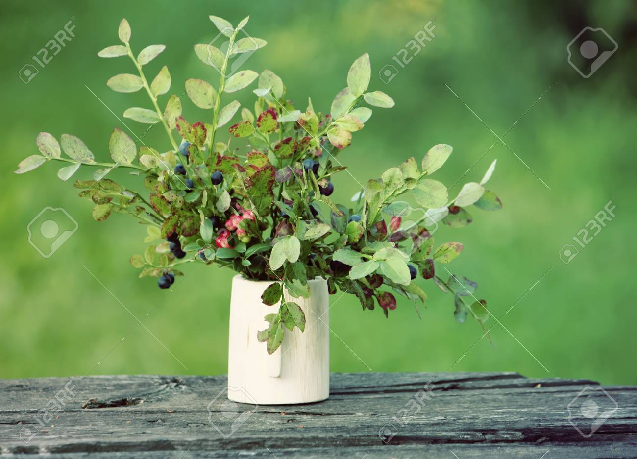 Bouquet Of Blueberry In A Wooden Vase Outdoors Stock Photo Picture And Royalty Free Image Image 62573682