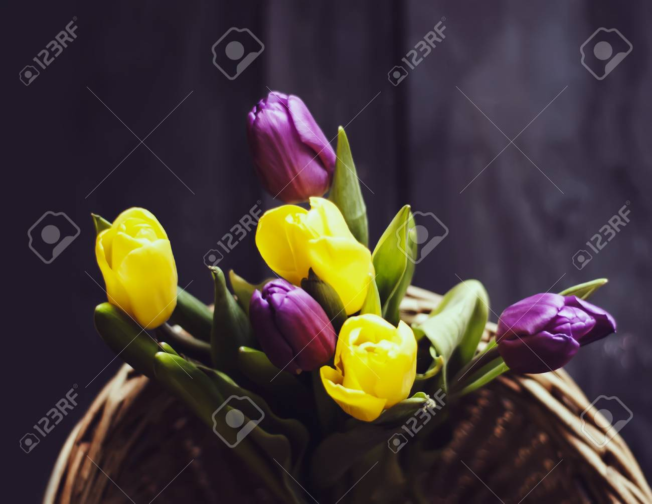 Spring Floral Background Beautiful Tulip Flowers In A Wicker