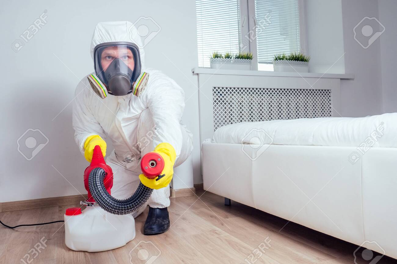 pest control worker lying on floor and spraying pesticides in bedroom - 133688042