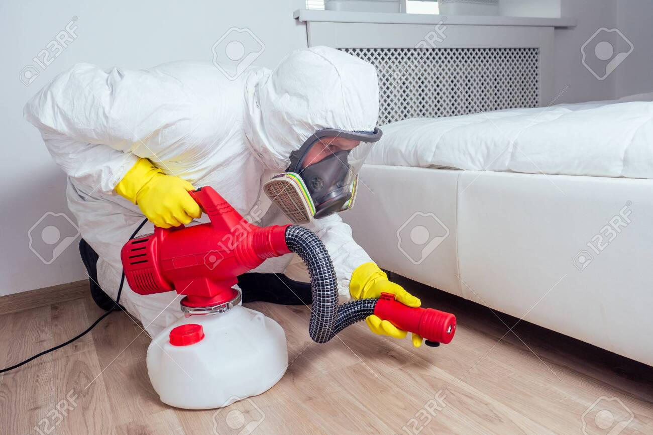 pest control worker lying on floor and spraying pesticides in bedroom - 133688199