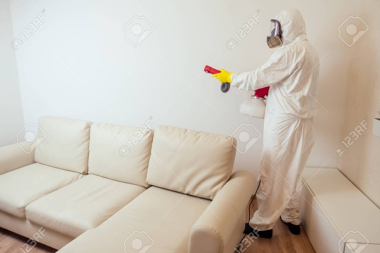 pest control worker in uniform spraying pesticides under couch in living lounge room. - 132702806
