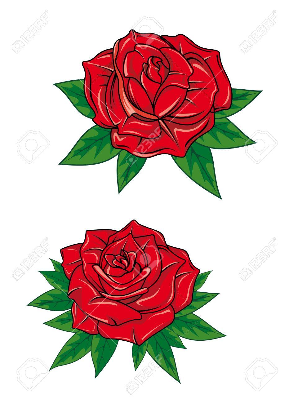 Rosas Rojas Con Petalos Frescos Elegantes Y Verde Puntiagudas Hojas En Estilo De Dibujos Animados Aislado En El Fondo Blanco Para El Diseno De