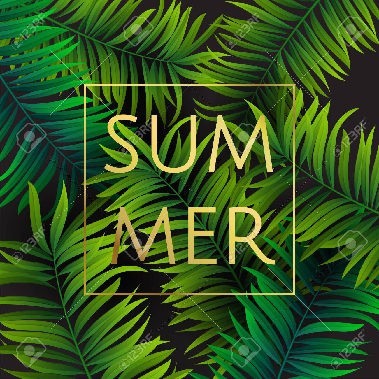 Tropical palm leaves design for text card. Summer. Vector illustration EPS10. - 148277082