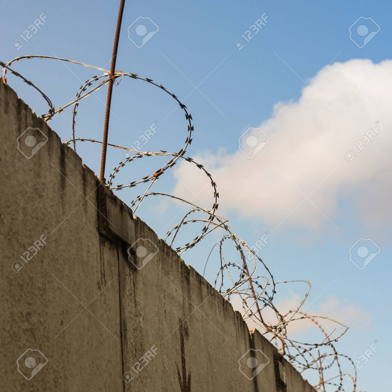 Barbed Wire Wound On The Fence Of Concrete Slabs Stock Photo ...