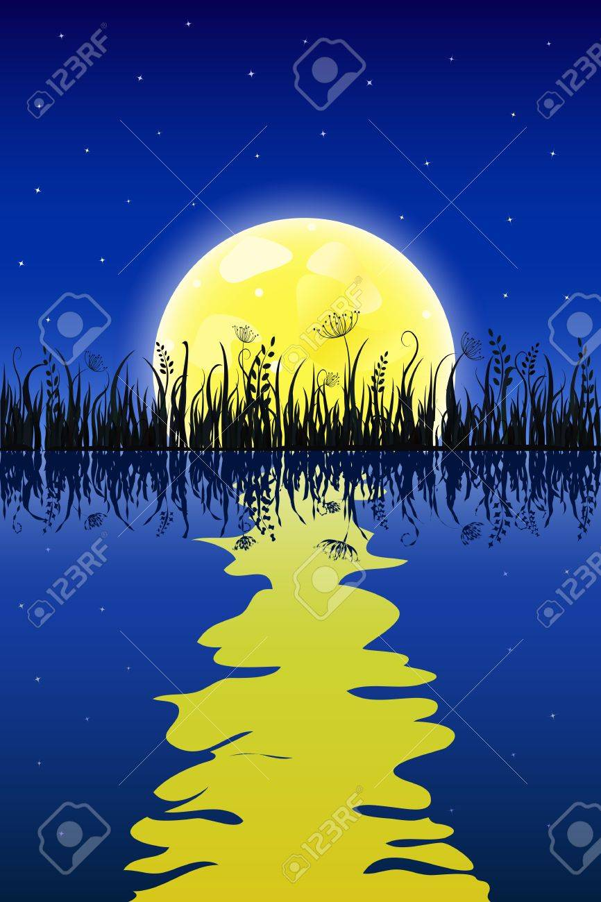 Yellow moon with reflection at water and grass meadow. Night Vector illustration. Stock Vector - 20069442