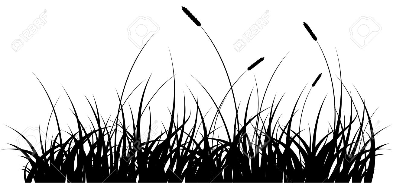 Grass Outline Vector Vector - black silhouette of a