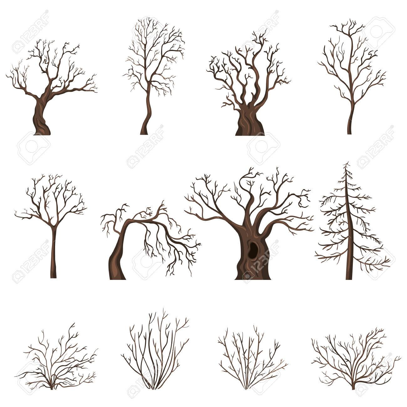 Vector Set Of Brown Cartoon Bare Trees And Shrubs Without Leaves Royalty Free Cliparts Vectors And Stock Illustration Image 67581646 Cartoon trees cartoon pics cartoon drawings easy drawings tree drawing for kids art for kids kids canvas art bible story crafts picture tree. vector set of brown cartoon bare trees and shrubs without leaves