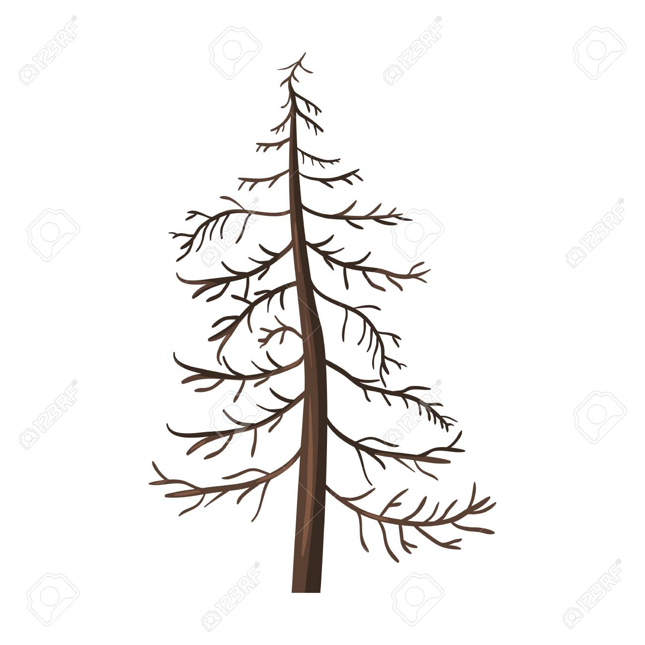 Bare Christmas Tree Clipart.Vector Single Cartoon Brown Bare Pine Tree On White Background