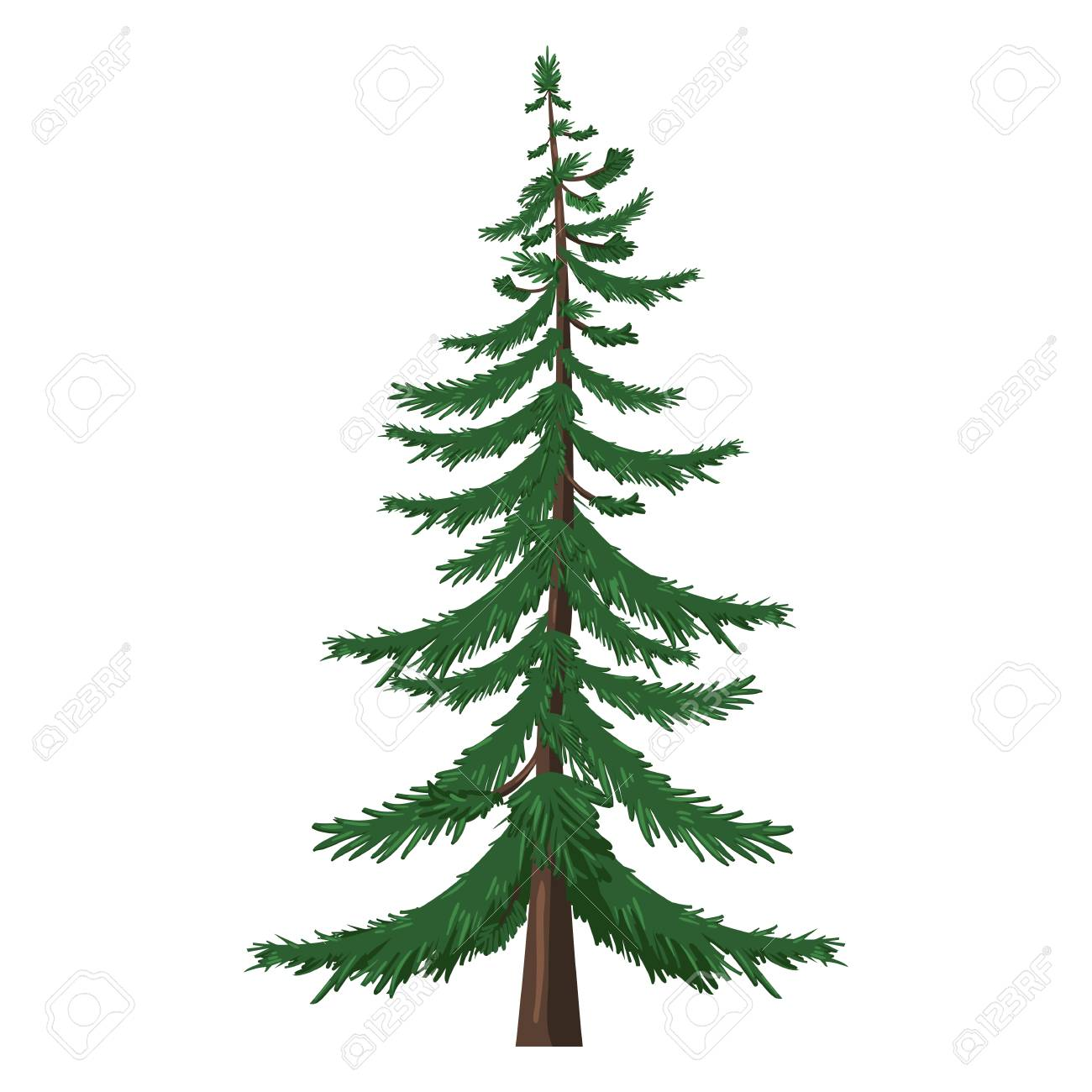 vector single isolated cartoon pine tree on white background royalty rh 123rf com pine tree vector art pine tree vector png