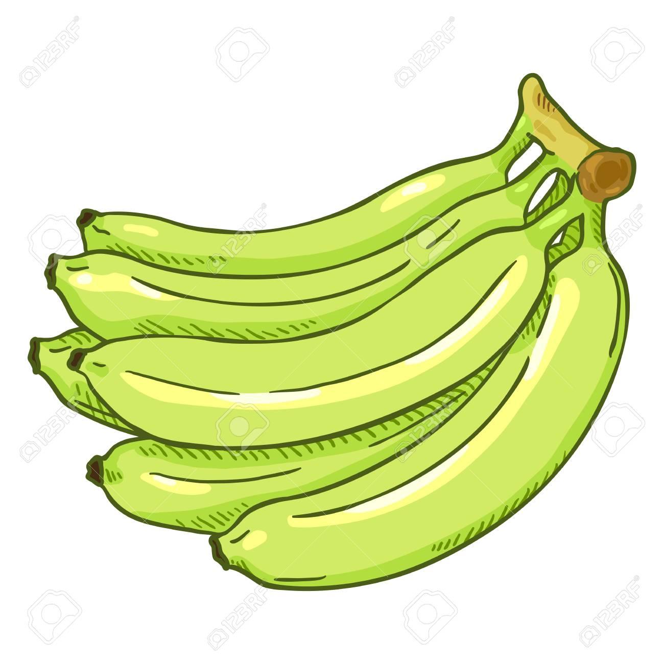 Banana Clipart png download - 494*600 - Free Transparent Cartoon png  Download. - CleanPNG / KissPNG