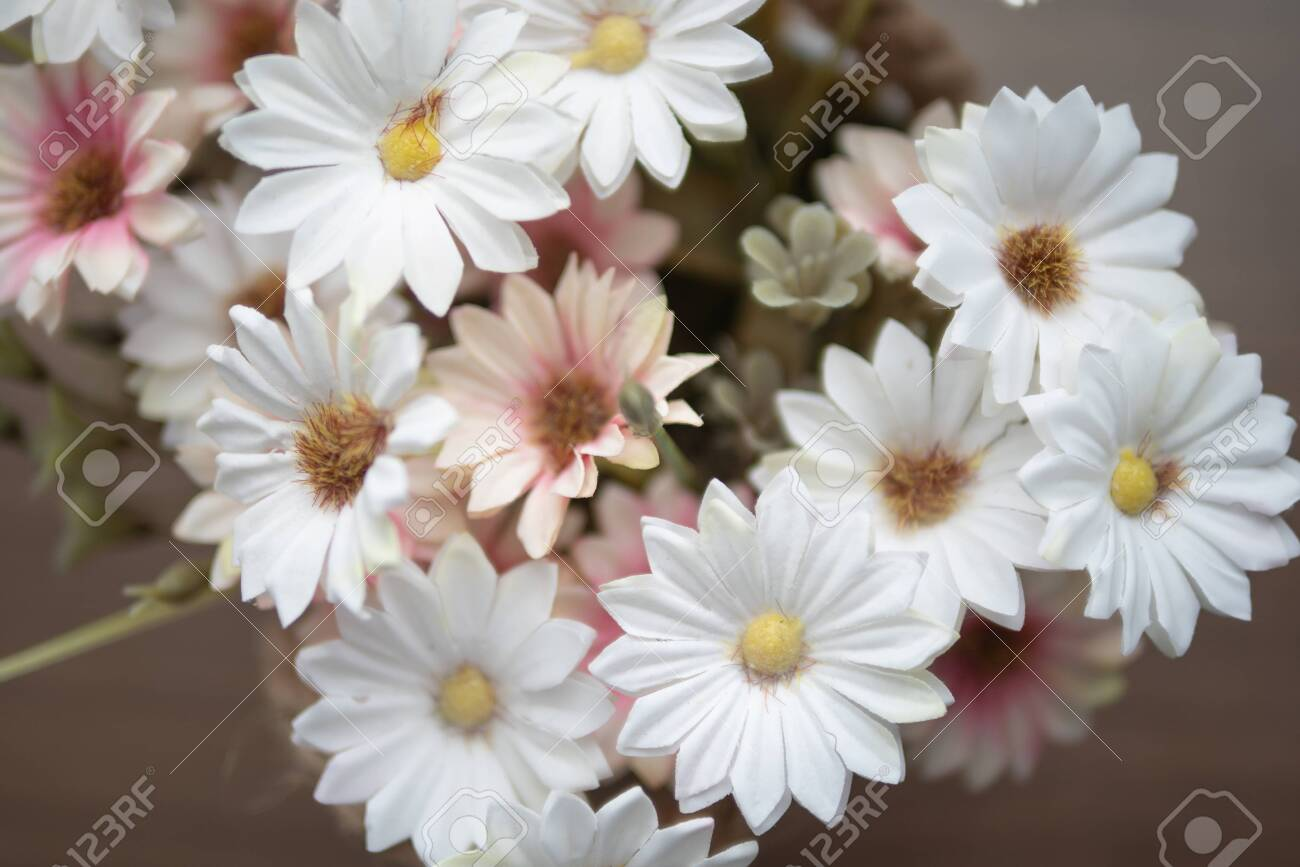 Close up white and pink flowers on the wooden table with yellow pollen. Top view blooming of fake flower. - 128848987