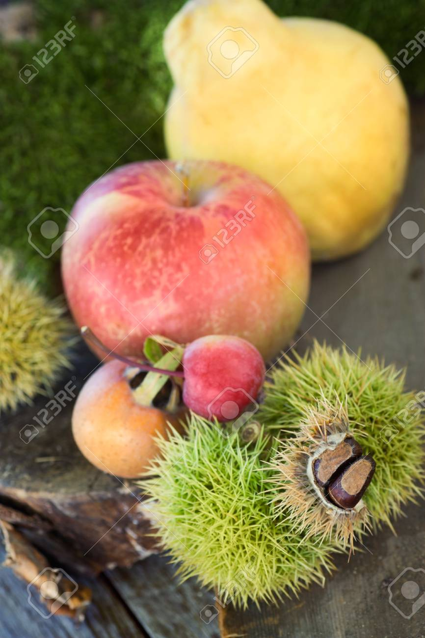 Autumn series. Nature background made of autumn fruit in the forest and beautiful sunlight in the back. Chestnut, vine leaf, wild apple, quince and apples. Stock Photo - 10906943