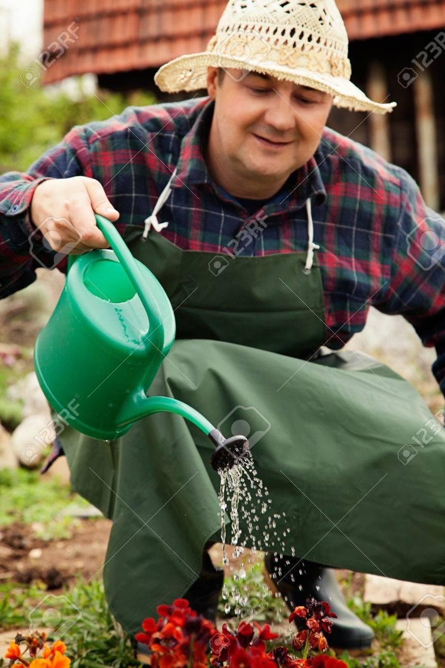 Spring garden concept. Male is doing garden work in herb garden Stock Photo - 14679985