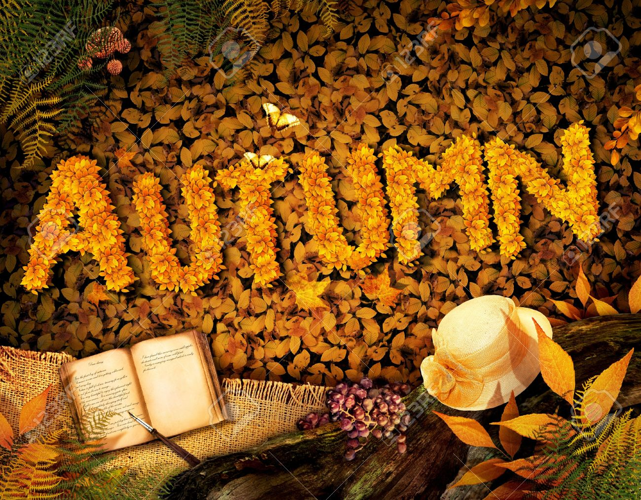 Autumn season concept design. Fall background with text in beautiful yellow forest. Vintage design with autumn fruit, mushrooms, leaves and book diary. Stock Photo - 14982538