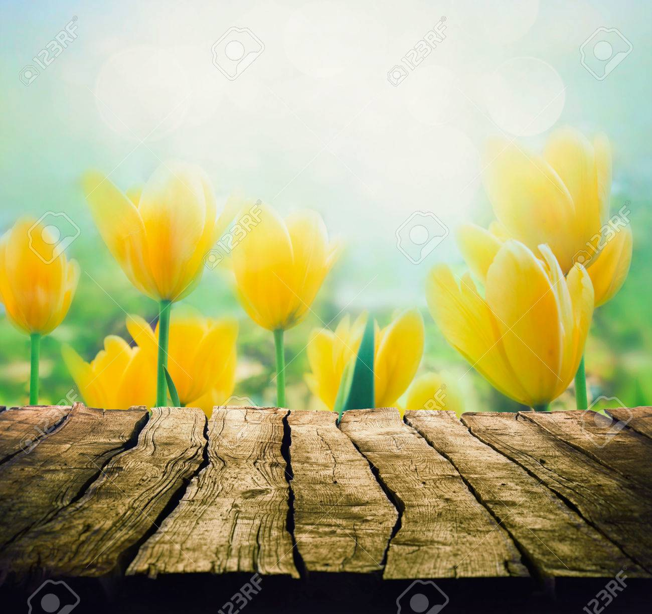 Easter background with tabletop spring flowers background wood easter background with tabletop spring flowers background wood table with tulips stock photo mightylinksfo