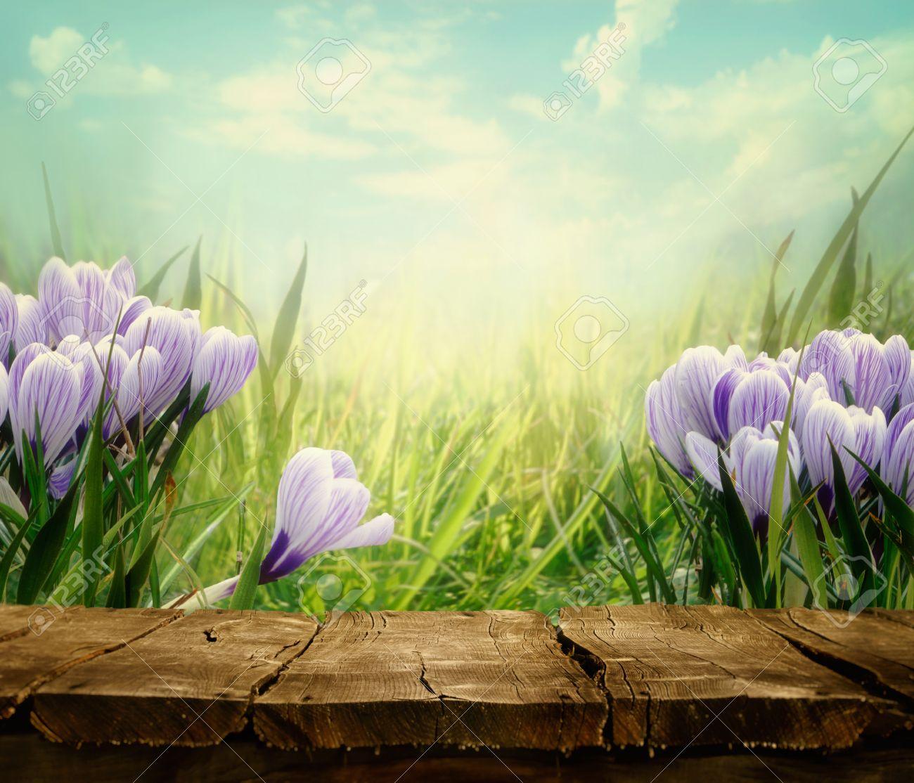 Immagini Stock Primavera Sfondo Primavera Tavolo Con Fiori