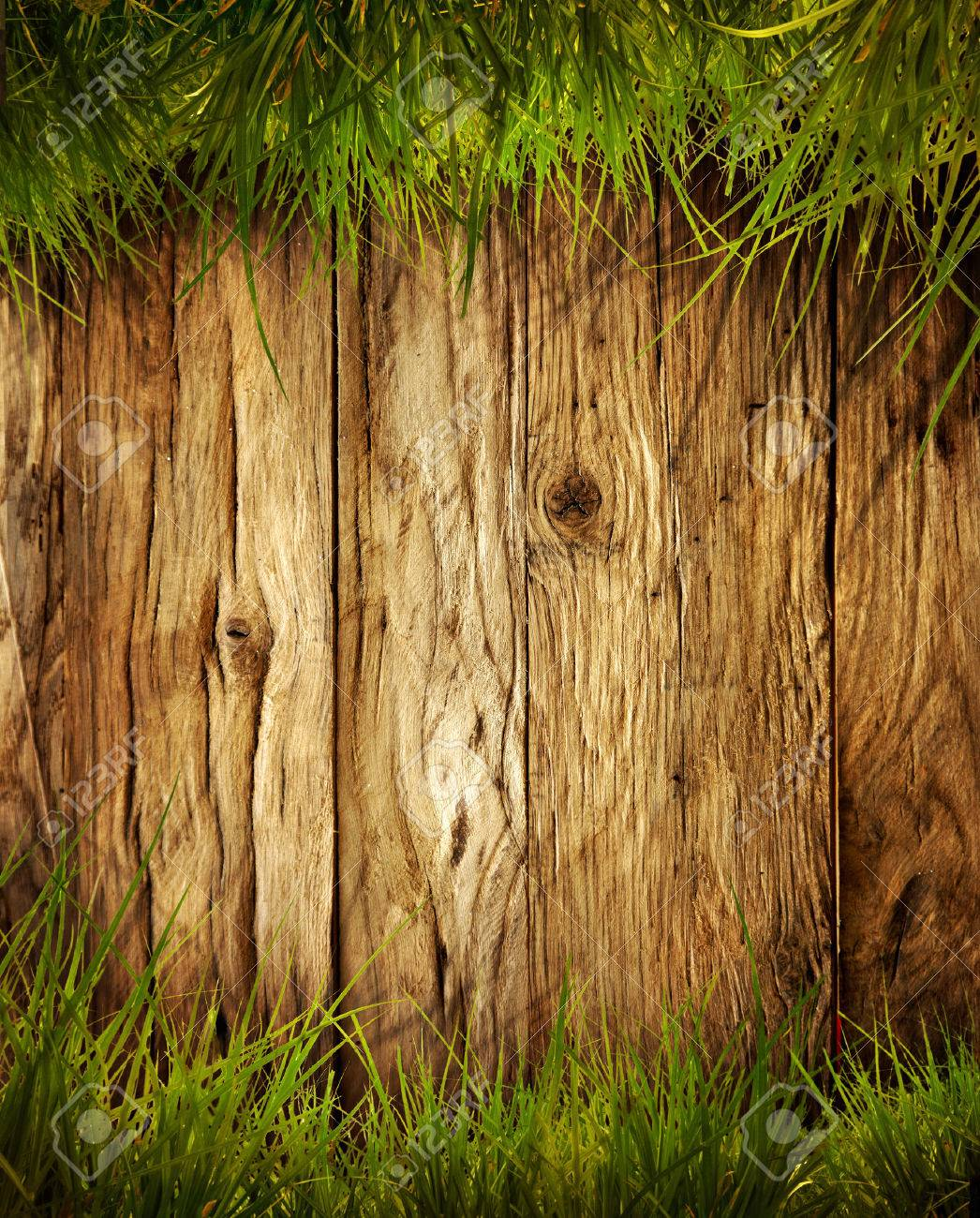 Spring grass background. Grass over wood. Nature background with grass and wood - 42140248