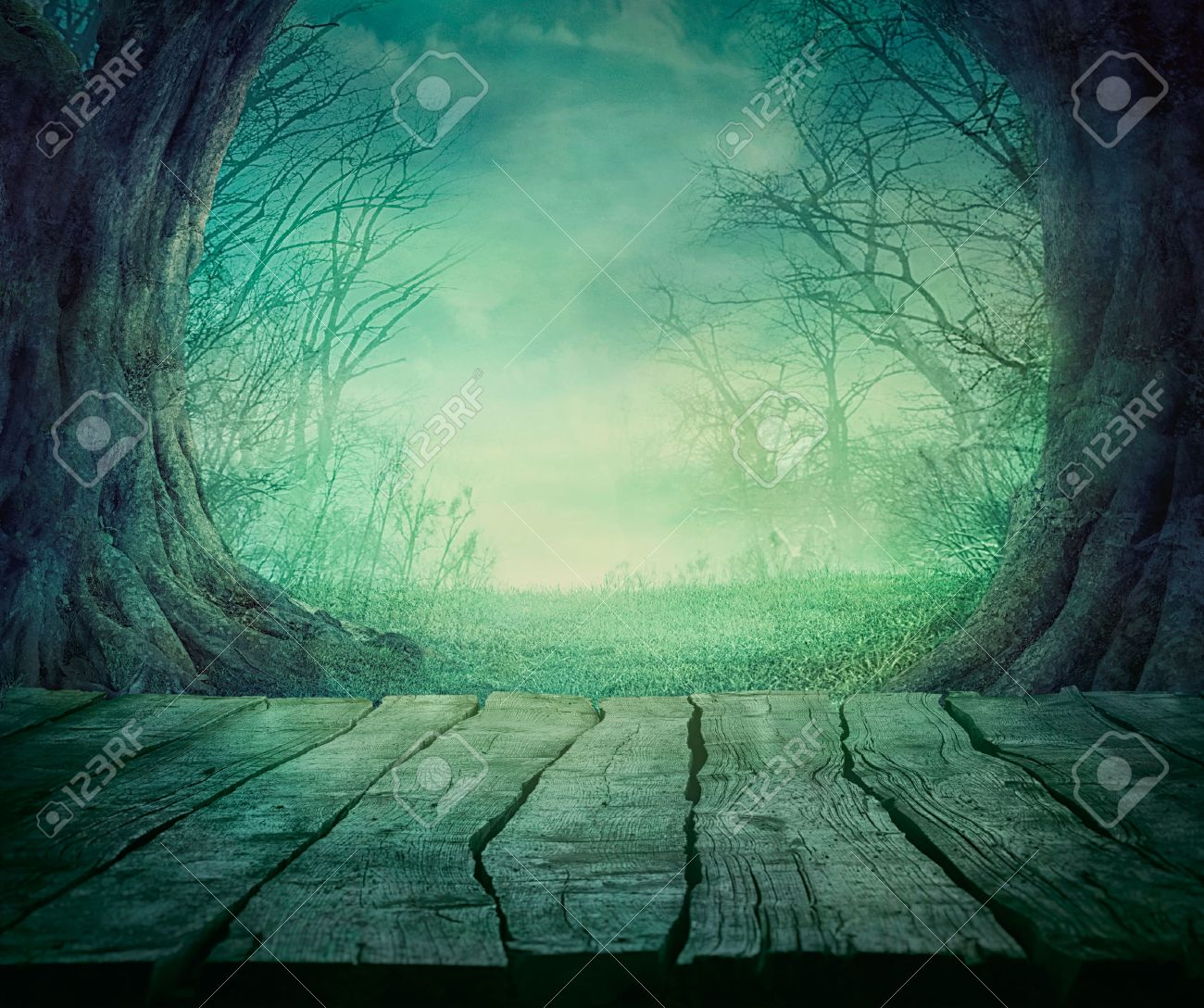 Halloween background. Spooky forest with dead trees and wooden table. Wood table - 46774983