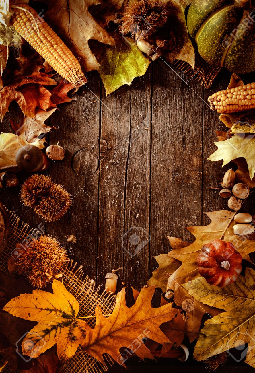 Thanksgiving dinner. Autumn fruit on wood with copyspace. Thanksgiving autumn background - 46775024