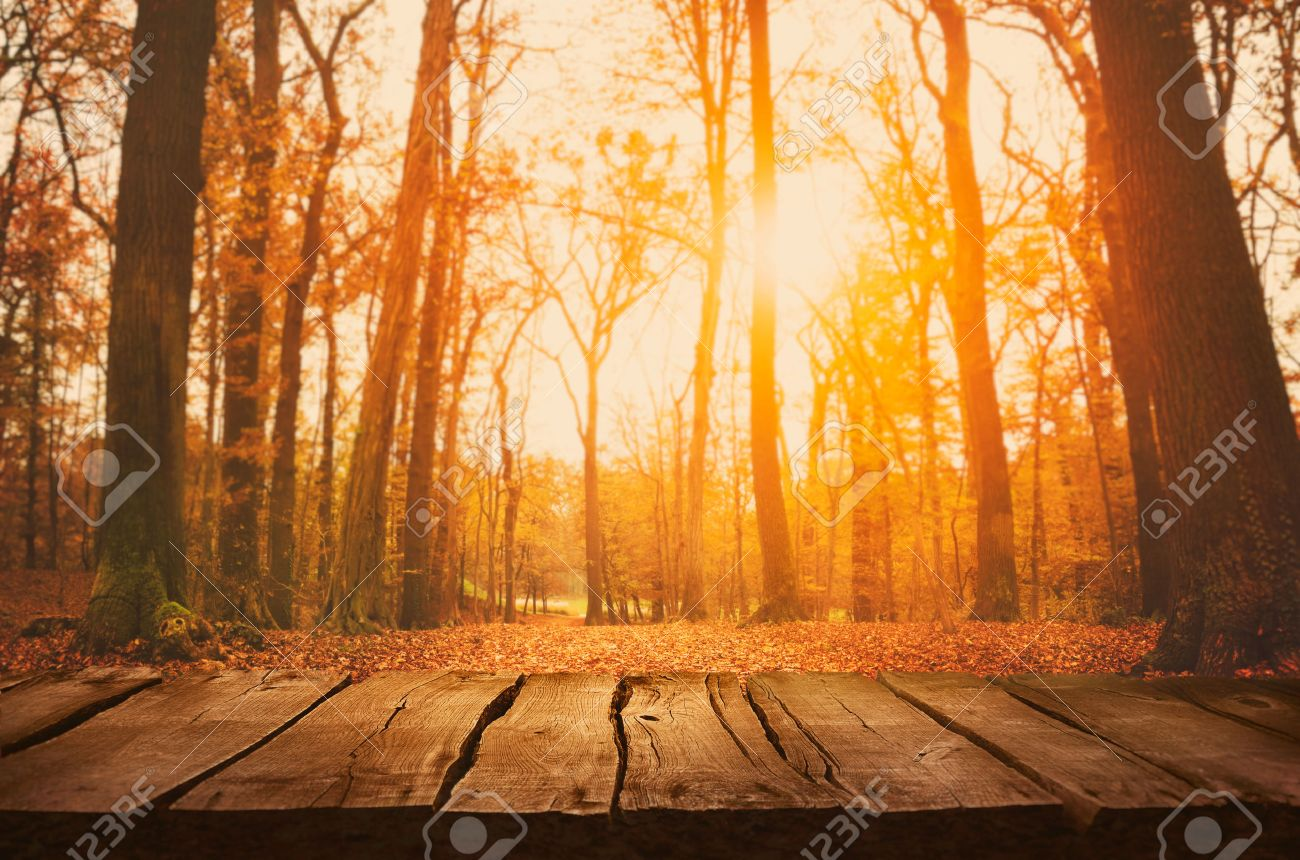 Wooden table. Autumn design with leaves falling in forest and empty display. Space for your montage. Season fall background - 46775034