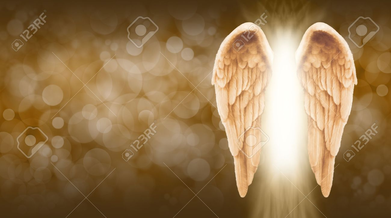 Golden Angel Wings on golden brown Bokeh Banner - Wide golden brown bokeh background with a large pair of Angel Wings on the right side and a shaft of bright light between - 53897548