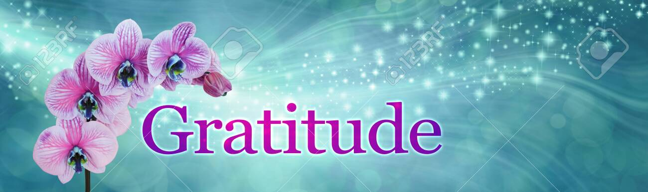 Gratitude Orchid Sparkle Banner Wide Jade Green Flowing Sparkle Stock Photo Picture And Royalty Free Image Image 138032156
