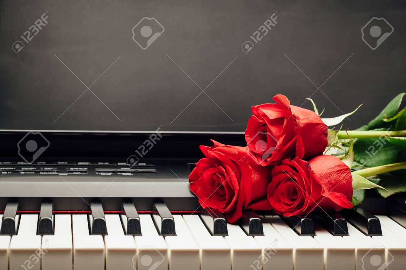 red roses on piano keys with copy-space - 50168971