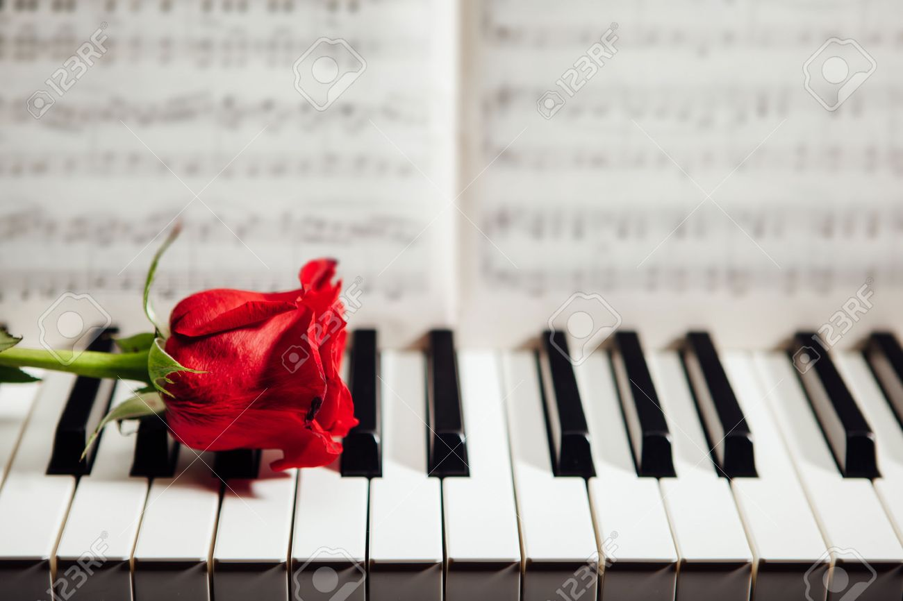 red rose on piano keys and music book - 52679299