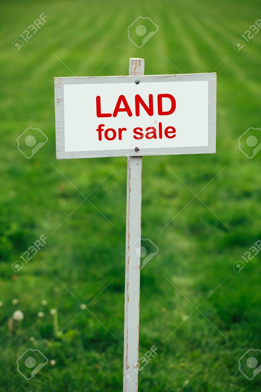 Land for sale sign against trimmed lawn background stock photo 61763094