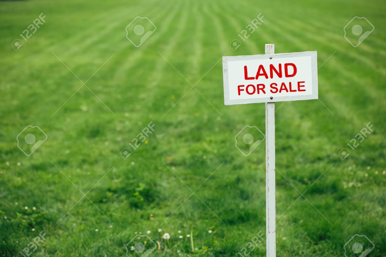 land for sale sign against trimmed lawn background - 61763264