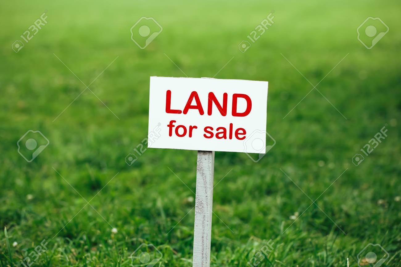 Land for sale sign against trimmed lawn background stock photo 61763425