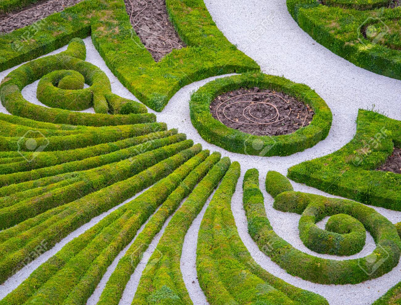 Topiary Cut Into A 2D Design In A Large Garden - 139283216