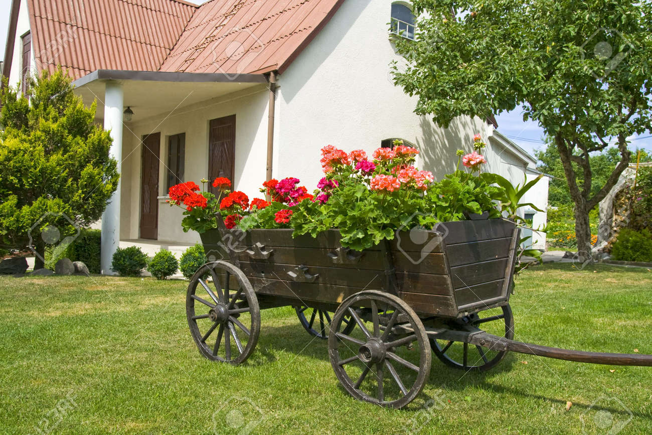 Wooden lawn decorations - Yard S Decoration A Waggon With Wooden Wheels And With Flowers In Bloom Stock Photo