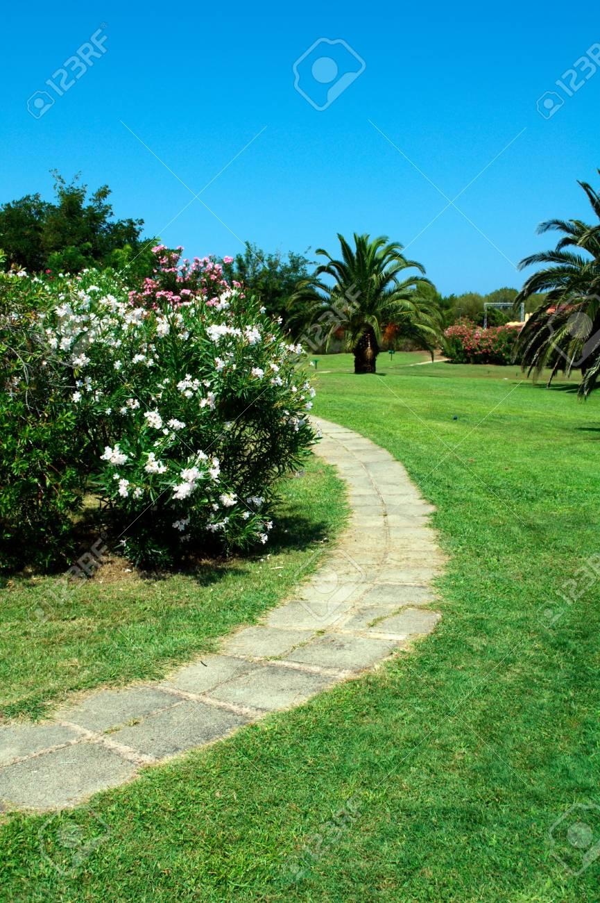 Stone walk way in a beautiful garden Stock Photo - 8589721