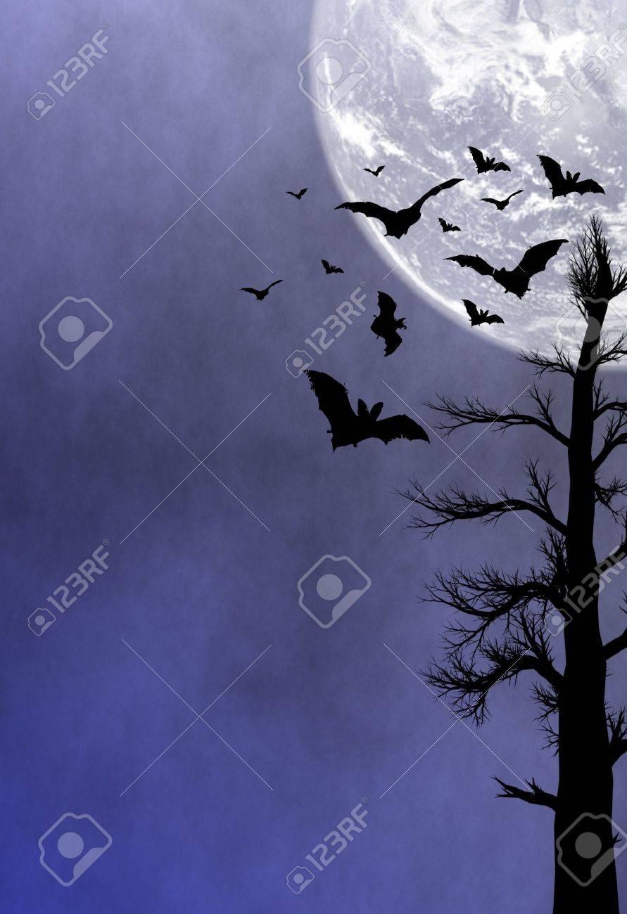 Halloween night background Stock Photo - 9944566