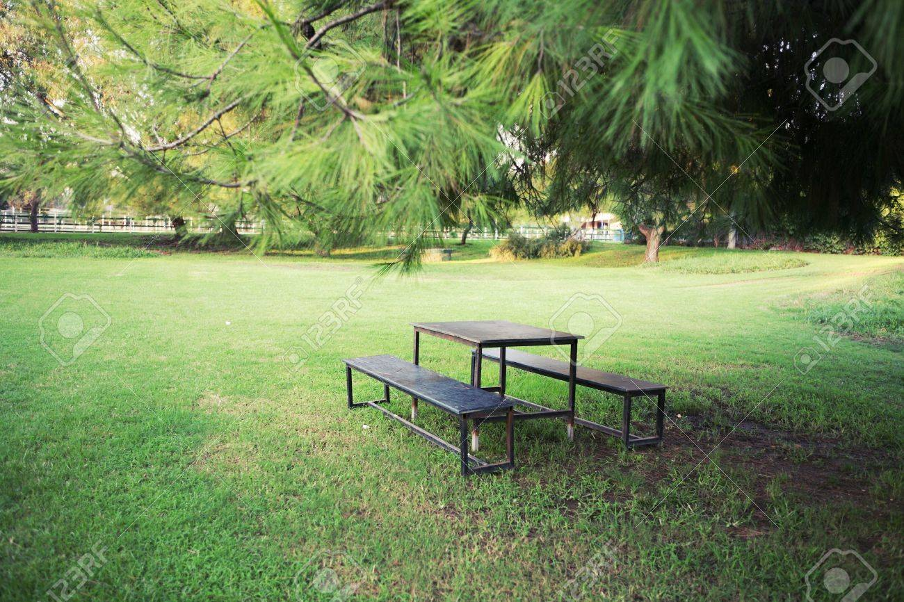Picnic table in beautiful park Stock Photo - 4925463