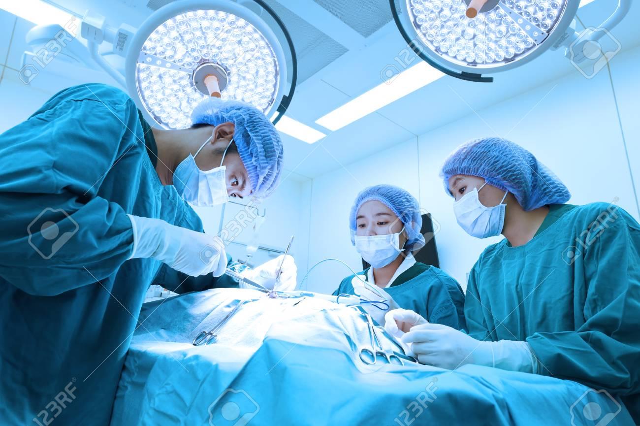 Gruppo di ambulatorio veterinario in sala operatoria con