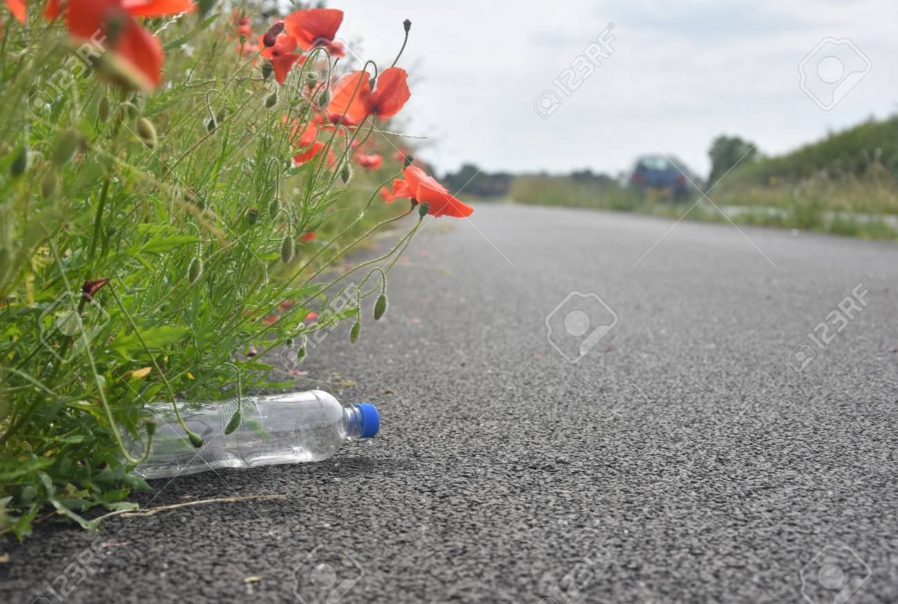 A discarded plastic bottle lies at the side of a path nestled a discarded plastic bottle lies at the side of a path nestled amongst poppy flowers as mightylinksfo