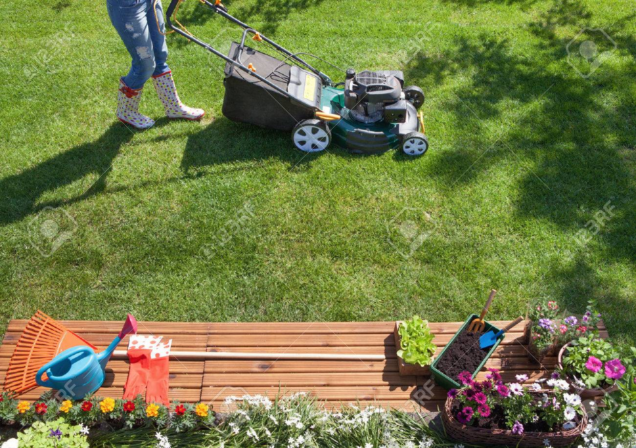 Woman mowing with lawn mower in the garden, gardening concept - 51112325
