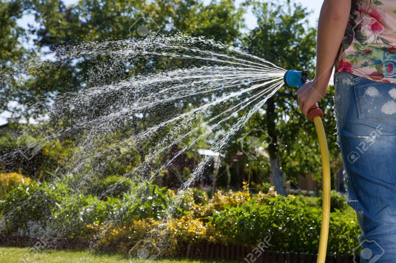Woman holding garden water hose watering garden - 51169125