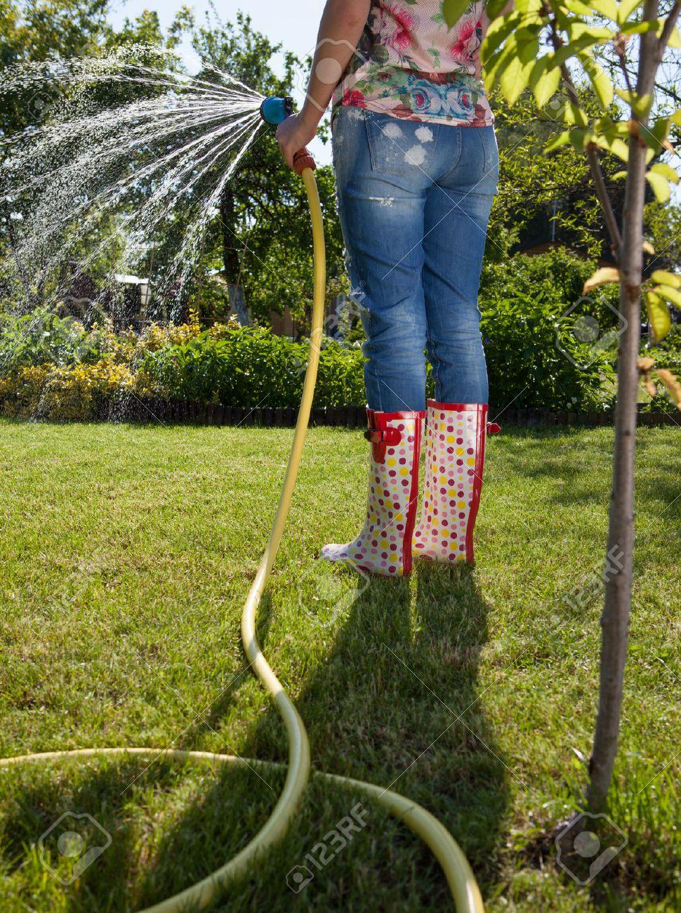Woman Holding Garden Water Hose Watering Garden Stock Photo   51169158