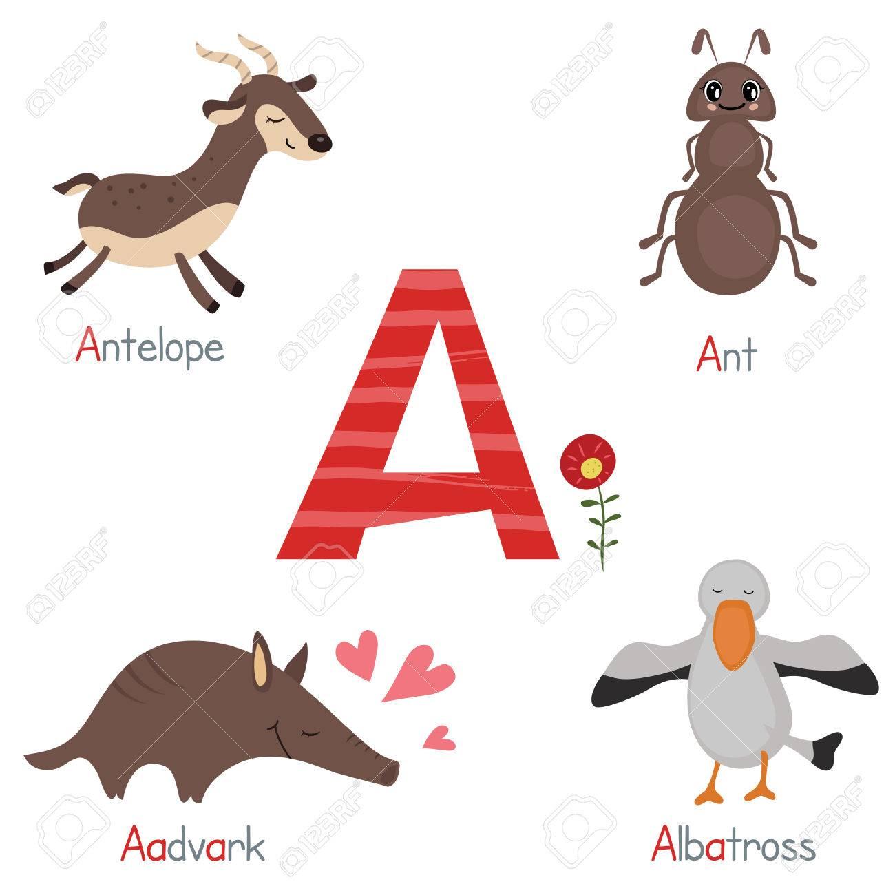 かわいい動物園 カモシカポスター イラスト素材 アルファベット 素材 猫