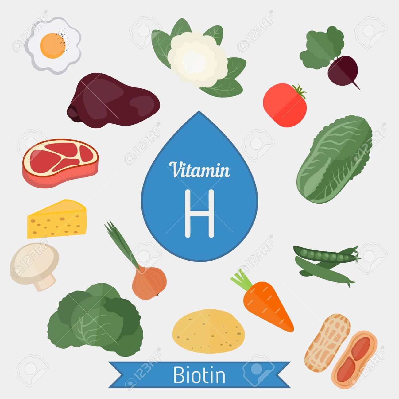 Vitamin H oder Biotin und Vektor-Set von Vitamin H reiche Lebensmittel.  Gesunde Lebensstil und Diät-Konzept.