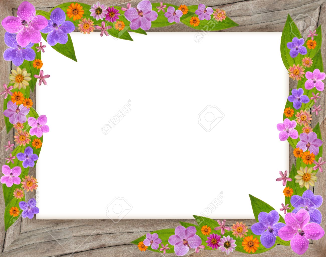 Floral Beautiful Flower Frame Isolated On White Background Stock